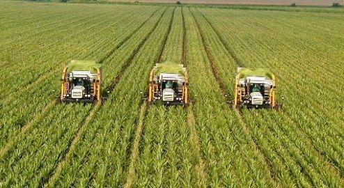 ΟΠΕΚΕΠΕ: Πληρωμές σε αγρότες – Πότε μπαίνουν τα λεφτά στους δικαιούχους