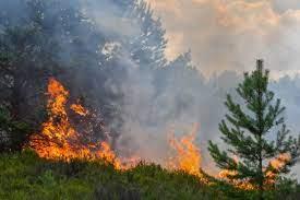 Καταστροφή της επιχείρησης από πυρκαγιά. Τι δικαιούται ο εργαζόμενος;